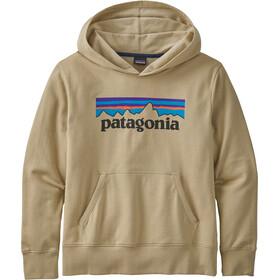 Patagonia Lightweight Graphic Sweat À Capuche Garçon, vert